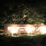 ウォーキングナイトサファリ2011 INアニマルキングダム