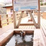 稲取文化公園雛の足湯は明日3月23日から再開です!