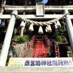稲取温泉新企画の素盞鳴神社雛段飾り開催中!