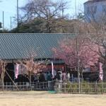 2月23日文化公園の様子